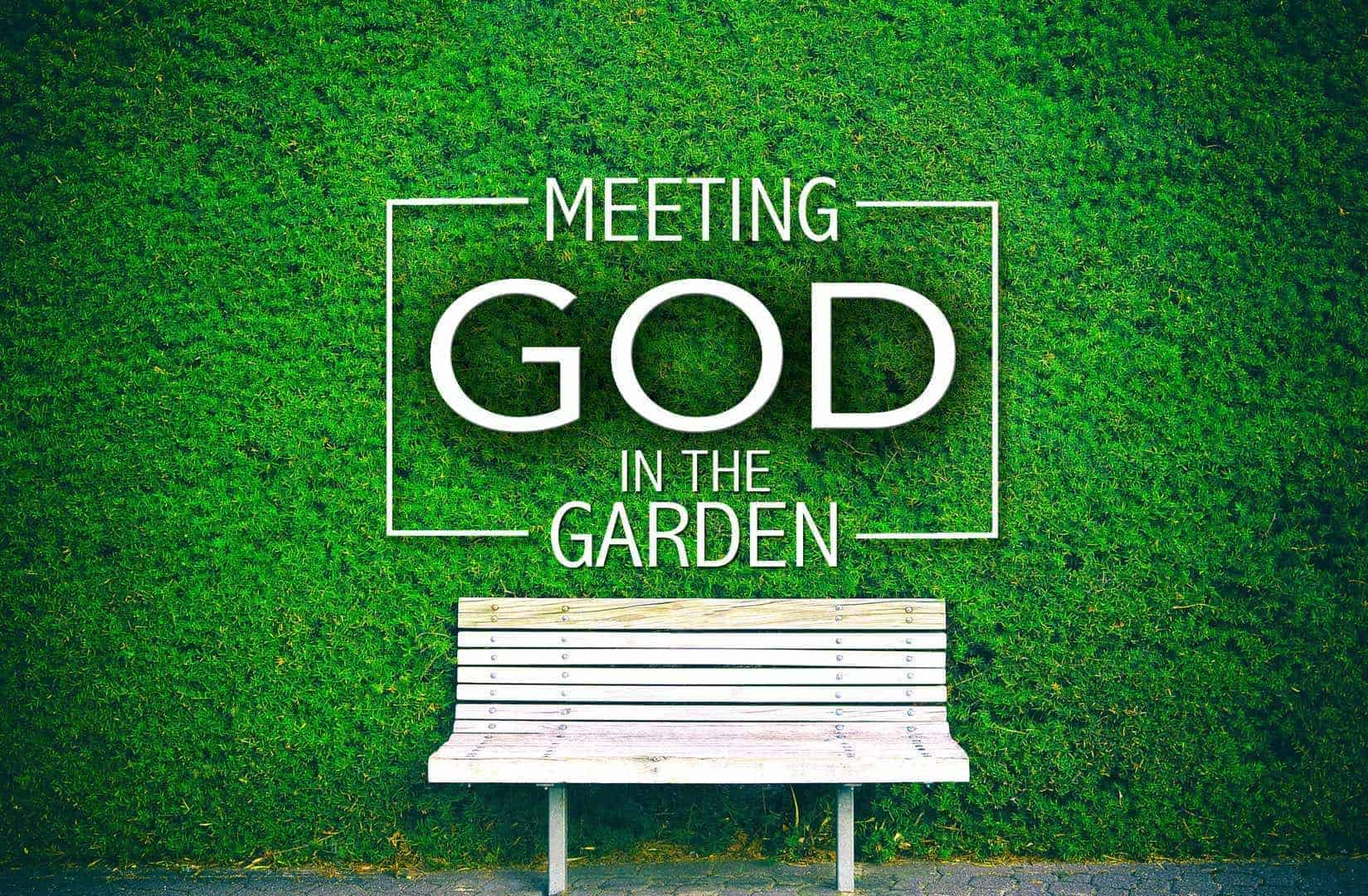 Meeting God in the Garden: The what, why, and how of Genesis Image